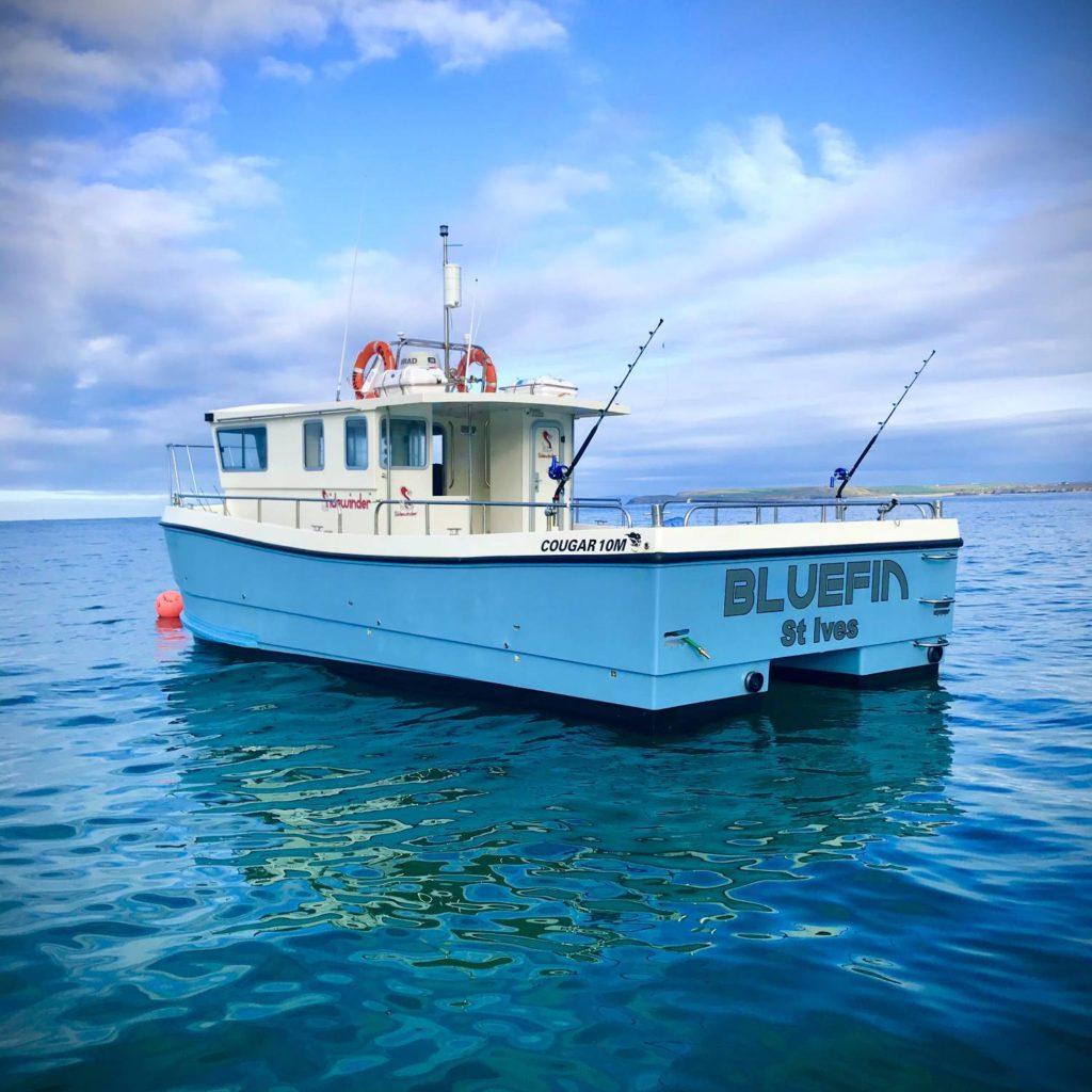 Bluefin featured photo